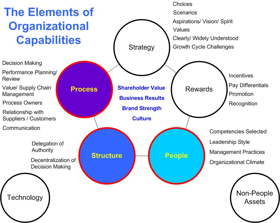 The Elements of Organizational Capabilities